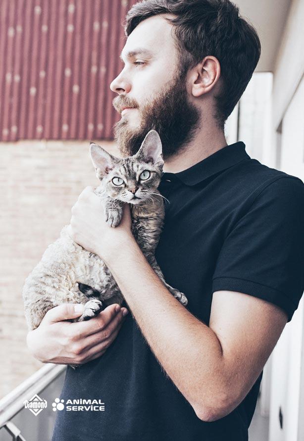 Dla właścicieli kotów
